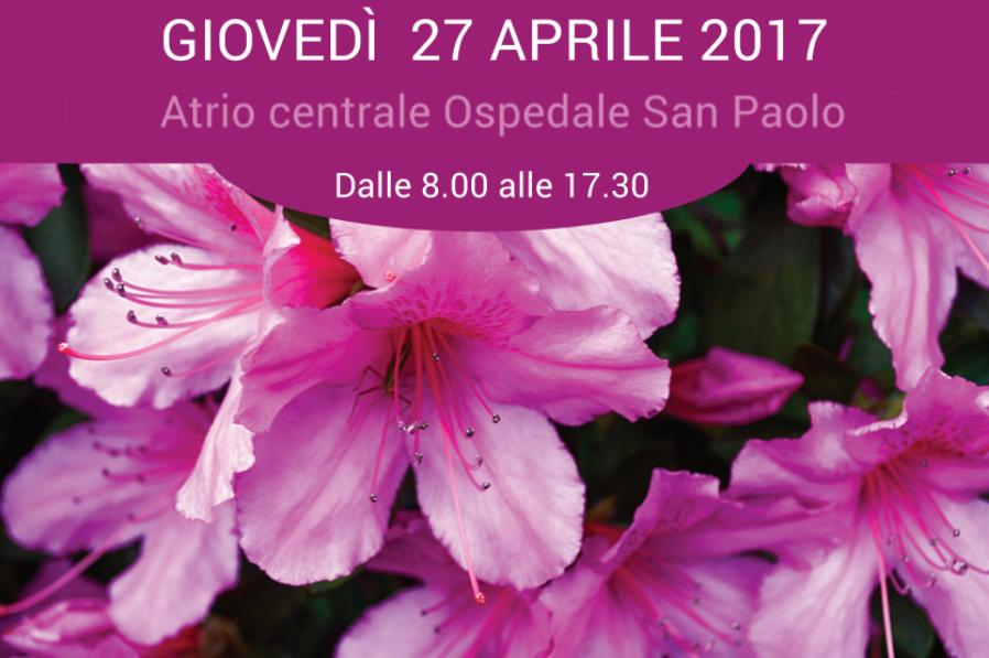 Schermata-2017-04-19-alle-00.19.10